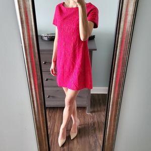 Cynthia Steffe Hot Pink Fuschia Lace Dress
